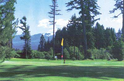 golf courses Courtney/Comox Valley, Vancouver Island-golfing travel info